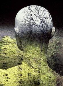 ekologijanauk1