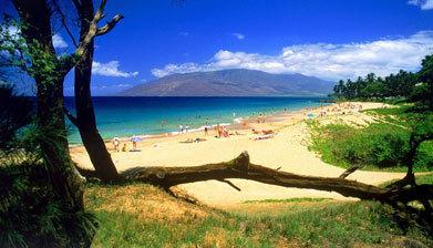 Plaža - Page 7 Havaji1
