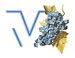TV VLASOTINCE